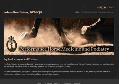 Performance Horse Medicine and Podiatry